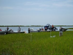 Researchers on a variety of small watercraft – from skiffs to air boats – gather and set up collection sites in a marsh along Terrebonne Bay. (Photo credit: Tiffany Warner, LUMCON)