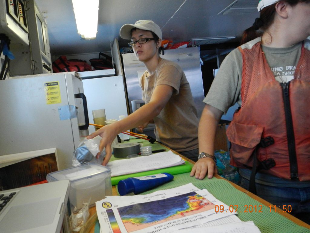 Cassie Wood, a DEEP-C REU participant, works in the onboard lab on RV Bellows. Cassie used her blog to share her experiences as part of a five-day microbiology and shelf sampling cruise. (Photo credit: Deep-C)