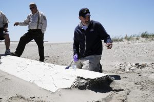 April 6, 2011, Dr. Chris Reddy collects an oil sample found on a large piece of debris that washed ashore on the Chandeleur Islands, LA following the spill. The Chandeleur Islands are a chain of barrier islands off the coast of Louisiana in the Gulf of Mexico and are a part of the Breton National Wildlife Refuge. (Photo credit: Catherine Carmichael)