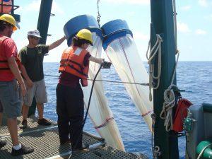 Samantha Bosman, a technician with the FSU Coastal & Marine Lab, prepares to deploy bongo nets to collect plankton. RV Weatherbird II (Photo credit: Jeff Chanton, FSU)