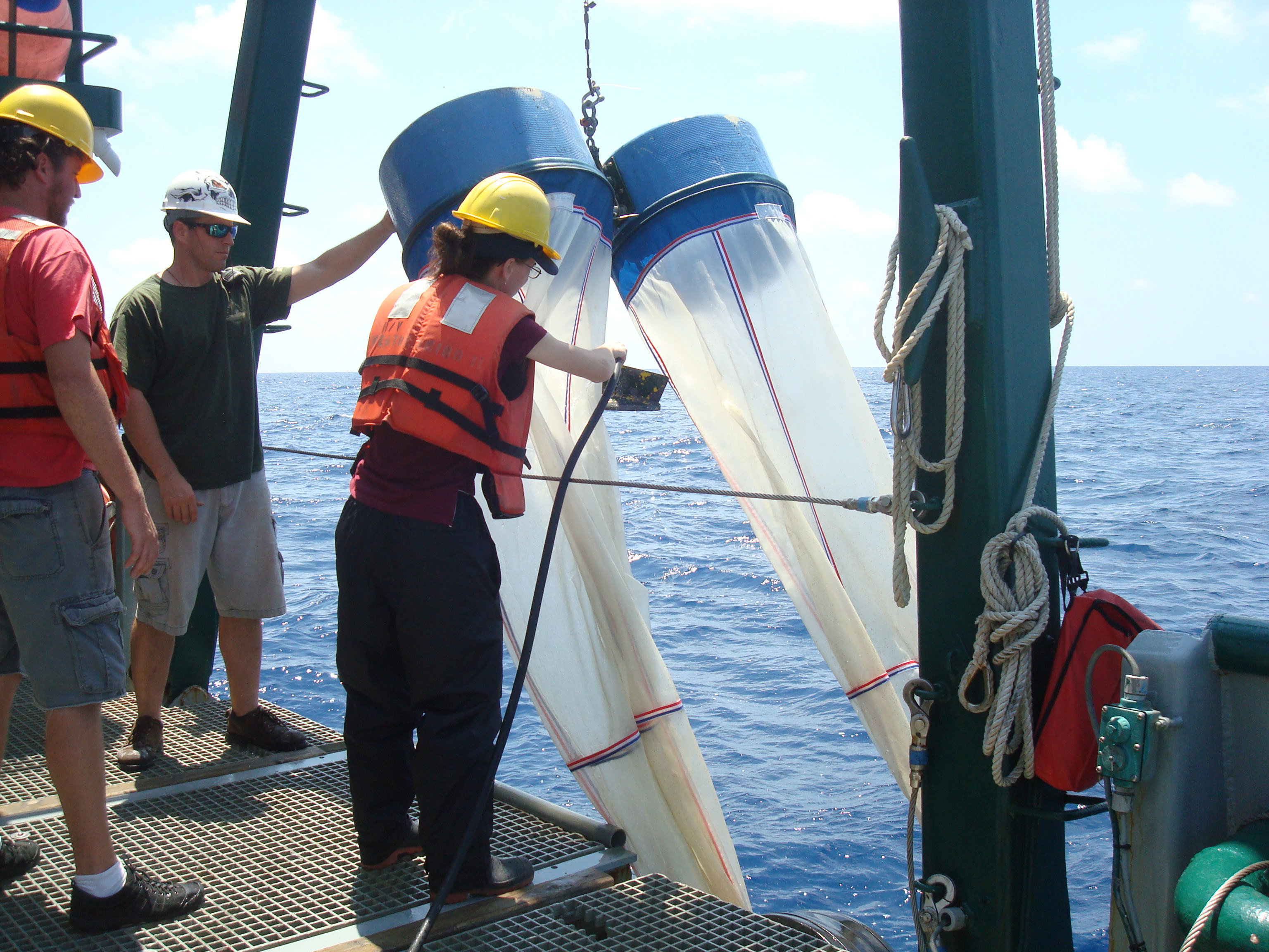 Study Finds Carbon from Deepwater Horizon Entered Food Web