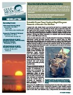Fall2013_GoMRI_NewsletterThumb