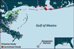 Oyster sampling sites along the Gulf coast for studies led by Dr. Thomas Soniat and by Dr. Ruth Carmichael.