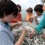 Mothers and sons identified, sorted, and counted the species caught in a trawl in Terrebonne Bay aboard the R/V Acadiana. (Photo by Murt Conover)